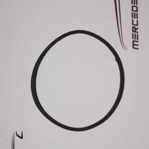 M0029975245 , A0029975245 , M100 M189 M127 M129 M130 Injection pump seal ring